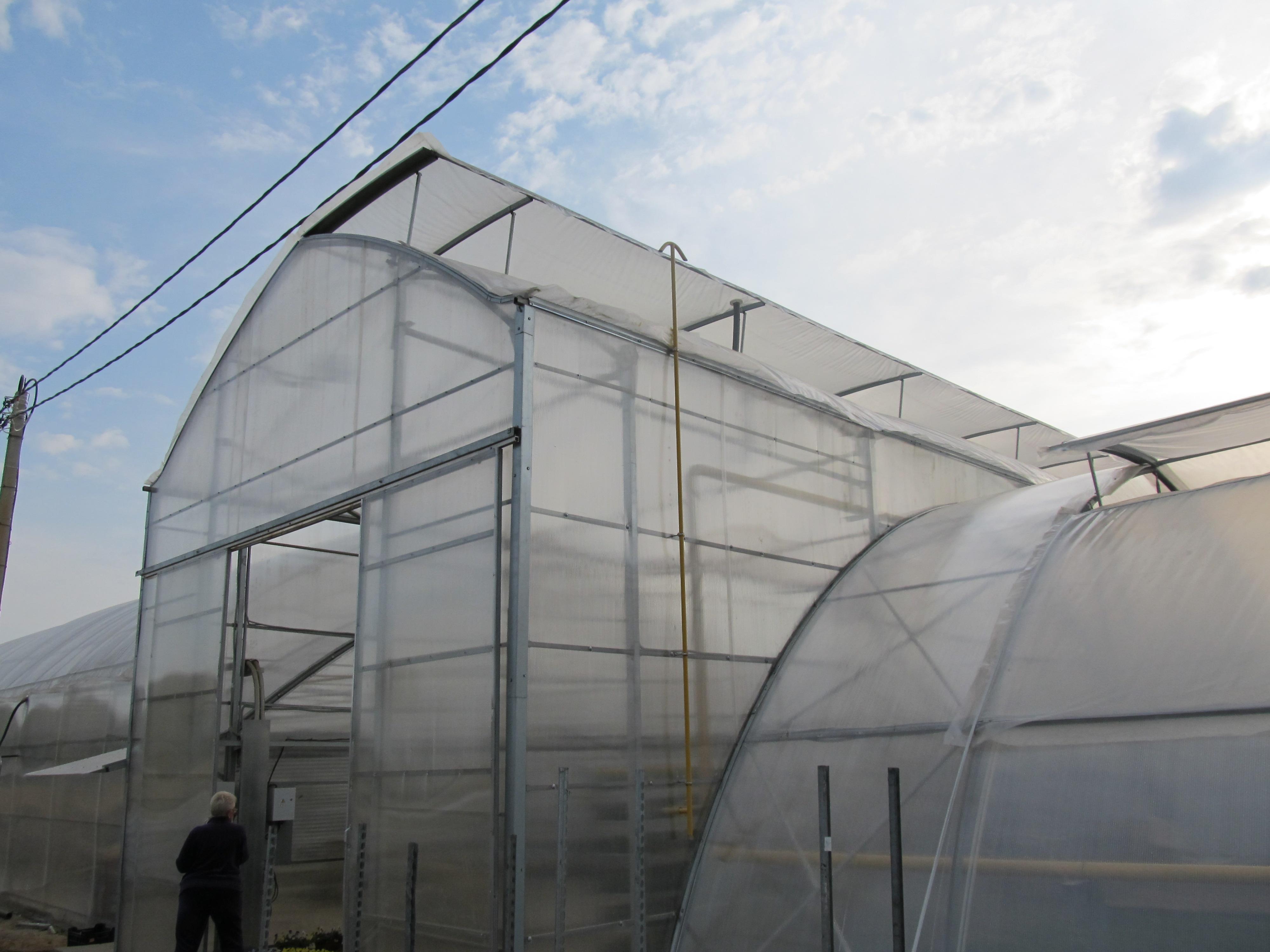 Промышленные теплицы для зеленых